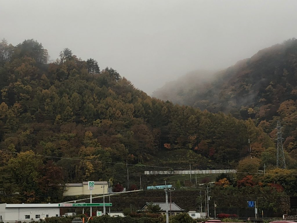 Densely wooded hills filled with fog.