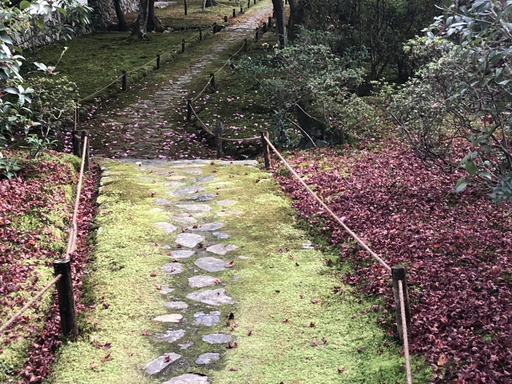 Another stone path, this one overgrown with moss.