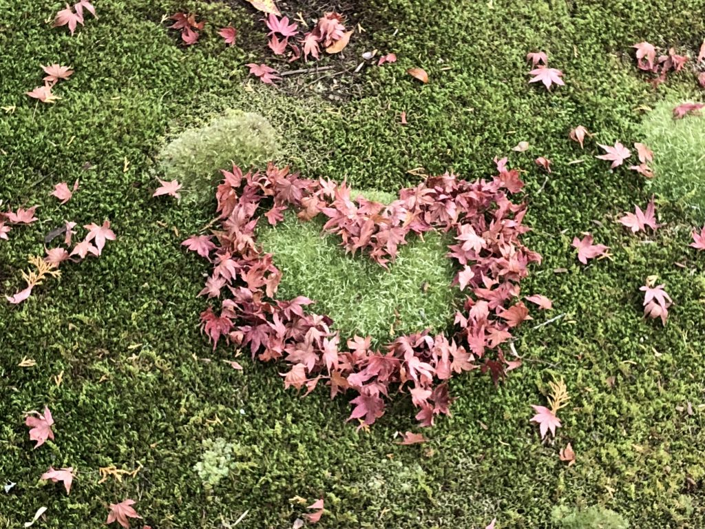 Someone moved the fallen maple leaves so that they form a red heart over the green moss.