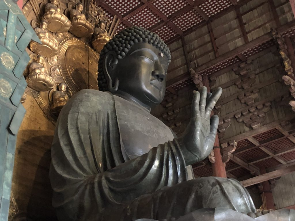 "A side view of the seated daibutsu. His hand is outstretched in the ""no fear"" gesture and he is gazing downward at visitors."