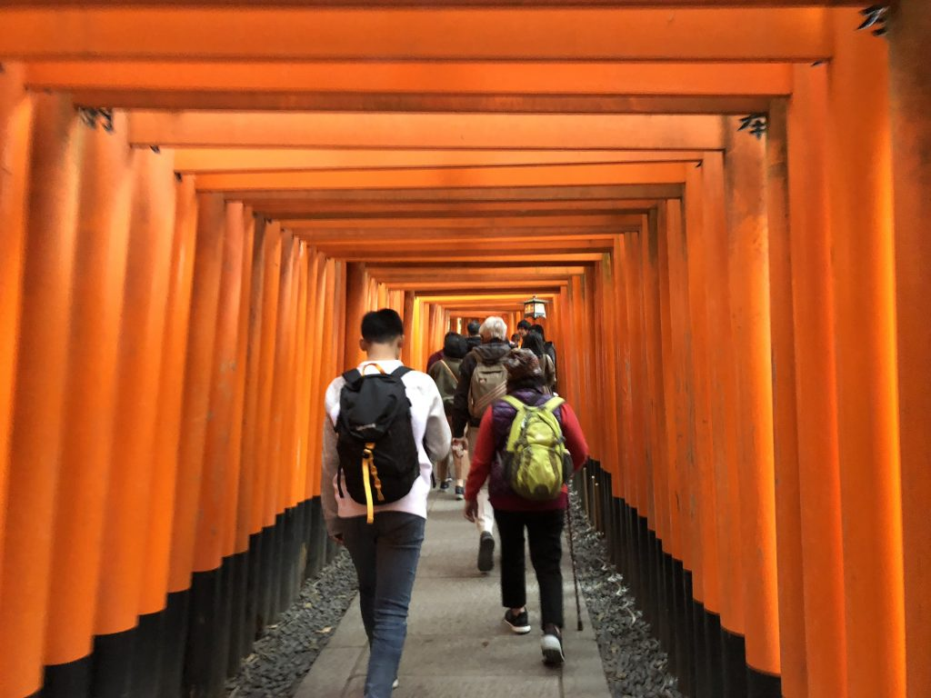 A photo of tourists walking through a tunnel of red torii gates.